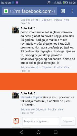 Ante Pekić