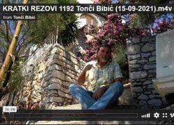 KRATKI REZOVI 1192 na internetu!