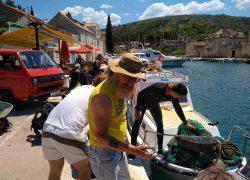 Tijekom čišćenja podmorja u Vranjicu preminuo dugogodišnji ronilac i počasni član svih ronilačkih klubova županije, aktivisti obustavili akciju