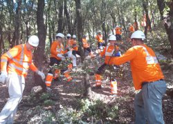 HPD Kozjak uz pomoć Grada i CEMEX-a uređuje Planinarski dom Putalj