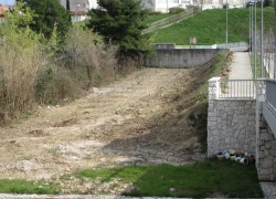 Maslinik i neobrađeno zemljište