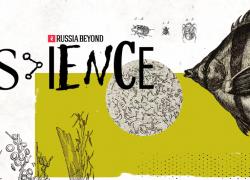 """Kako """"biološko oružje"""" može spasiti šume u Sibiru i Sjevernoj Americi? (VIDEO)"""