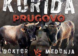KORIDA PRUGOVO Ove nedjelje uživajte u atraktivnim borbama bikova, iće i piće u režiji organizatora