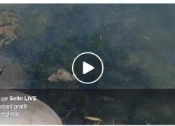 "INA opet ""počastila"" naftom našu riku Jadro, Gospodo do kada? (video)"