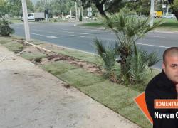 SKANDALOZNO: Kupujemo uvoznu travu, a domaće u izobilju